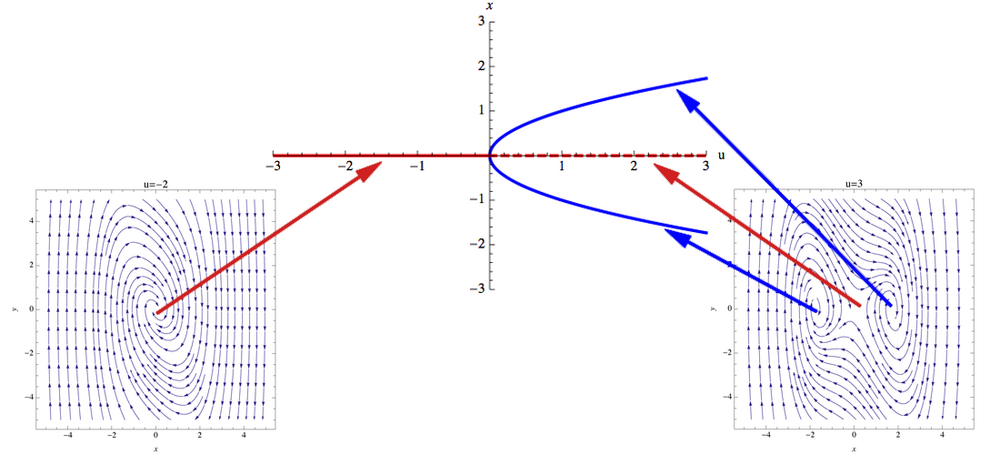 Bifurcation Diagram Mathbio